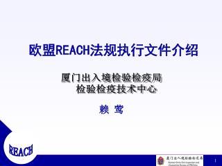 欧盟 REACH 法规执行文件介绍