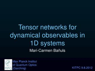 Tensor networks for dynamical observables in 1D systems