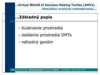 ...Virtual  World  of Decision Making Turtles (DMTs)