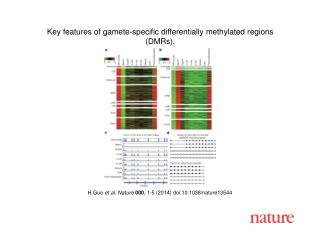 H Guo et al. Nature  000 , 1-5 (2014)  doi:10.1038/nature13544