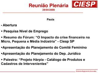 Reunião Plenária 29/04/2009