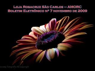 Loja Rosacruz S�o Carlos � AMORC Boletim Eletr�nico n� 7 novembro de 2009