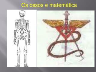 Os ossos e matemática
