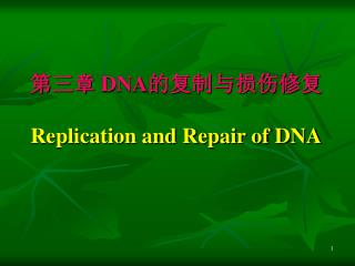 第三章  DNA 的复制与损伤修复 Replication and Repair of DNA