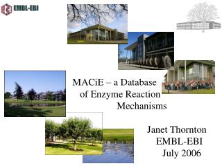 MACiE   a Database        of Enzyme Reaction       Mechanisms              Janet Thornton               EMBL-EBI