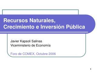 Recursos Naturales, Crecimiento e Inversión Pública
