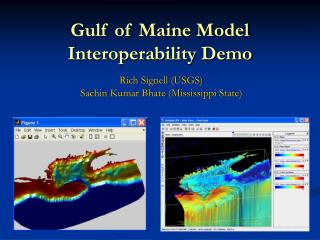 Gulf of Maine Model Interoperability Demo
