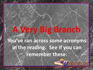A Very Big Branch