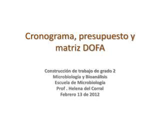 Cronograma, presupuesto y matriz DOFA