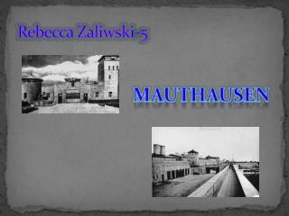 Rebecca Zaliwski-5