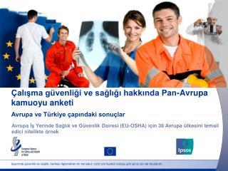 Çalışma güvenliği ve sağlığı hakkında Pan-Avrupa kamuoyu anketi