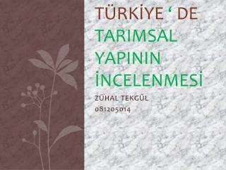 TÜRKİYE  '  DE  TARIMSAL YAPININ İNCELENMESİ