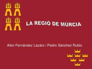 Aitor Fernández Lazáro i Pedro Sánchez Rubio