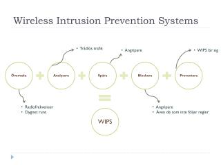 Wireless Intrusion Prevention Systems