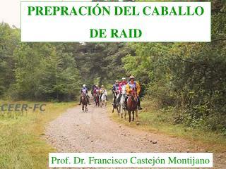 PREPRACIÓN DEL CABALLO  DE RAID