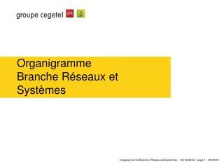 Organigramme  Branche Réseaux et Systèmes