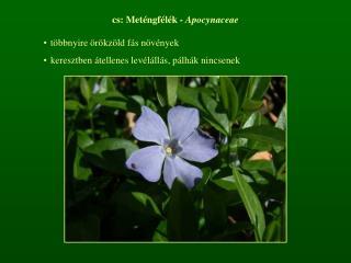 cs: Meténgfélék -  Apocynaceae többnyire örökzöld fás növények