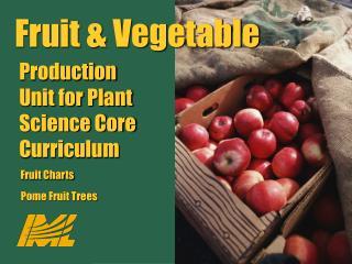 Fruit  Vegetable Production Unit for Plant