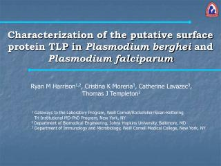 Characterization of the putative surface protein TLP in Plasmodium berghei and Plasmodium falciparum