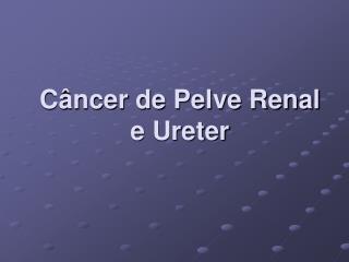 Câncer de Pelve Renal e Ureter