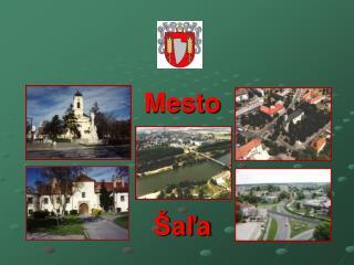 Mesto  Šaľa