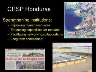 CRSP Honduras