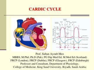 Prof. Sultan Ayoub Meo MBBS, M.Phil, Ph.D (Pak), PG Dip Med Ed, M Med Ed (Scotland)