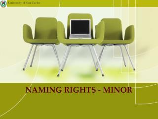 NAMING RIGHTS - MINOR