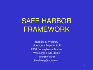 SAFE HARBOR FRAMEWORK