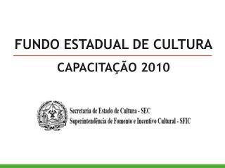 FUNDO ESTADUAL DE CULTURA CAPACITAÇÃO 2010
