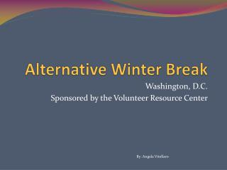 Alternative Winter Break