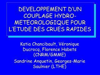 DEVELOPPEMENT D'UN COUPLAGE HYDRO-METEOROLOGIQUE POUR L'ETUDE DES CRUES RAPIDES