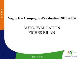 Vague E – Campagne d'évaluation 2013-2014 AUTO-ÉVALUATION FICHES BILAN