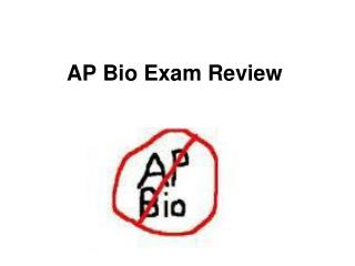 AP Bio Exam Review