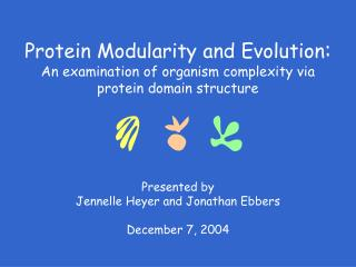 Presented by Jennelle Heyer and Jonathan Ebbers December 7, 2004