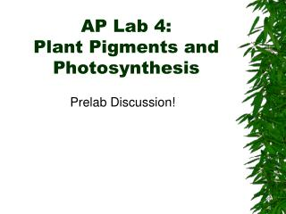 AP Lab 4:  Plant Pigments and Photosynthesis