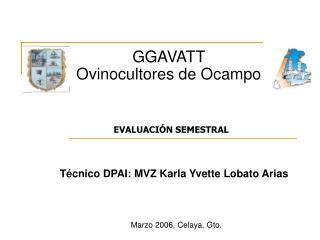 GGAVATT  Ovinocultores de Ocampo