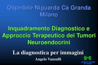 La diagnostica per immagini Angelo Vanzulli