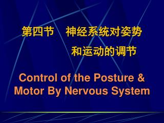 第四节  神经系统对姿势         和运动的调节 Control of the Posture & Motor By Nervous System