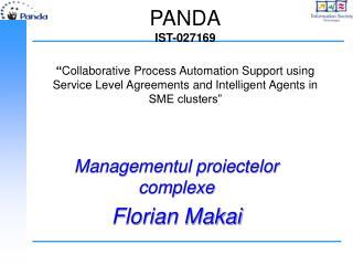 Managementul proiectelor complexe Florian Makai