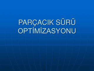 PARÇACIK SÜRÜ OPTİMİZASYONU