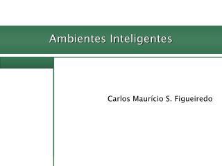 Carlos Maurício S. Figueiredo