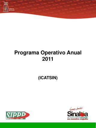 Programa Operativo Anual 2011