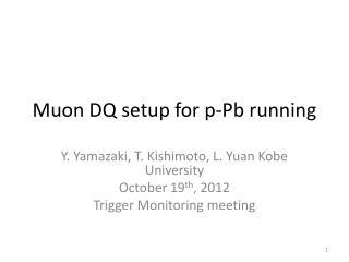 Muon  DQ setup for  p-Pb  running