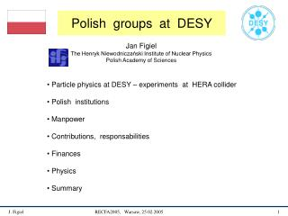 Polish  groups  at  DESY
