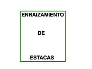 ENRAIZAMIENTO DE   ESTACAS