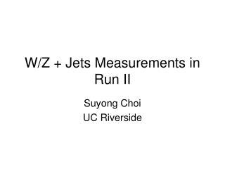 W/Z + Jets Measurements in Run II