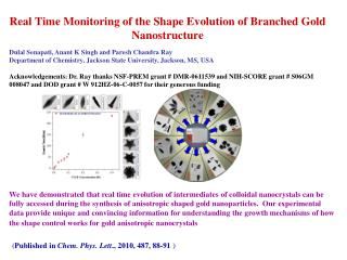 Real Time Monitoring of the Shape Evolution of Branched Gold Nanostructure