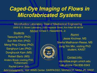 Caged-Dye Imaging of Flows in Microfabricated Systems