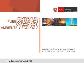 COMISION DE PUEBLOS ANDINOS AMAZONICOS, AMBIENTE Y ECOLOGIA
